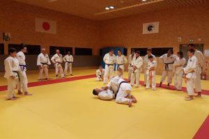 stage jujitsu à Briatexte